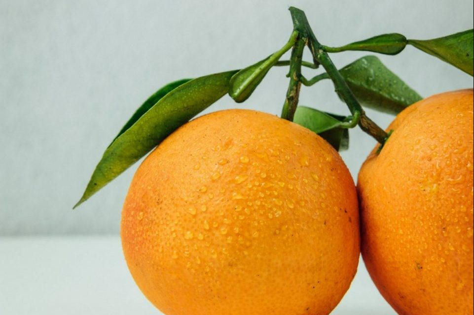 Dodaci ishrani koji pozitivno utiču na imunitet